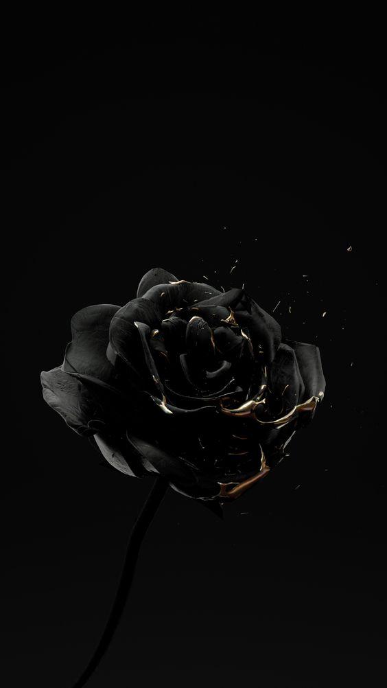 Hình ảnh Avatar đen Trắng9