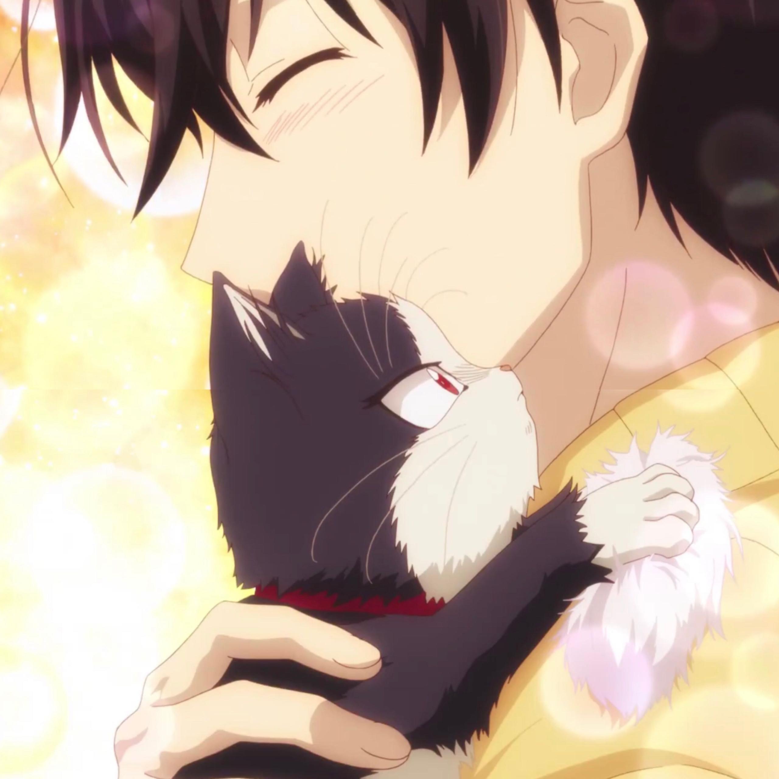 ảnh Mèo đen đẹp (5)